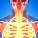 Osteoporosis and Your Teeth