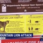Child Survives Mountain Lion Attack on Hiking Trail