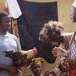 Ebola Ground Zero Traced to Tree in Guinea