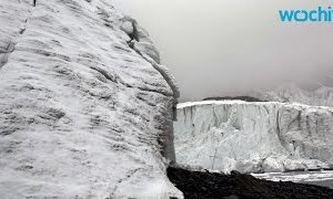 Western Canada's Glaciers Could Vanish by 2100: Study