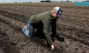 Current California Drought Will Cost Agriculture Sector Almost $2 Billion